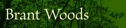 Brant Woods